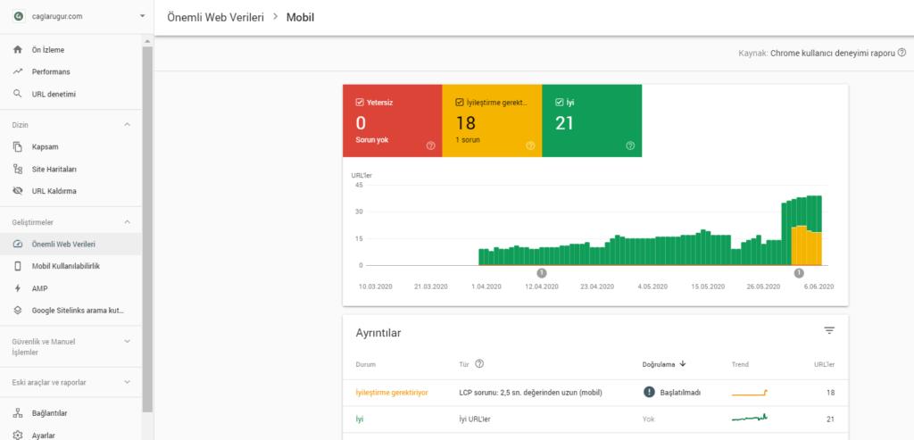 Önemli Web Verileri - Google Search Console - Mobil Raporu